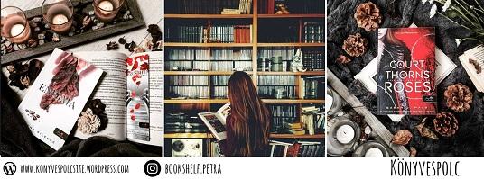 Könyvespolcsite blog