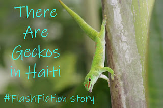 There Are Geckos in Haiti #WEP #FlashFiction