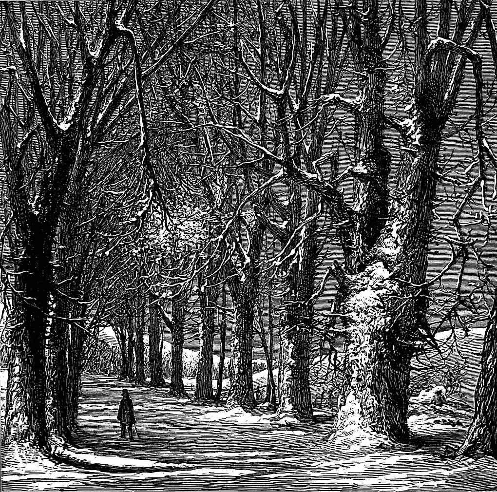 a Harry Fenn illustration, a man walking a country road in winter
