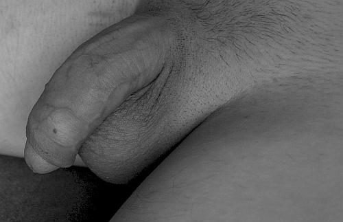 czarne owłosione seks porno