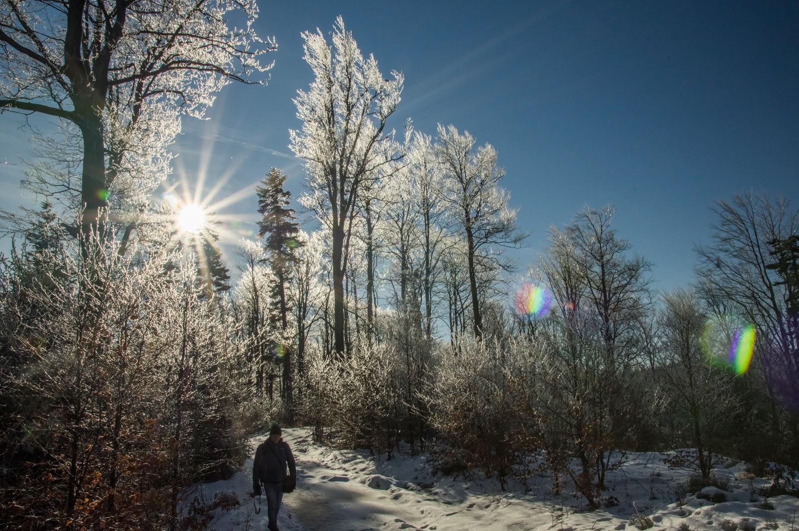 Już niedługo zima! Oby była śnieżna...