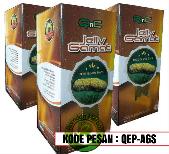 Agen Qnc Jelly Gamat Di Samarinda