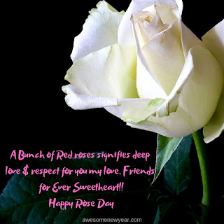 Happy Rose Day Wishes