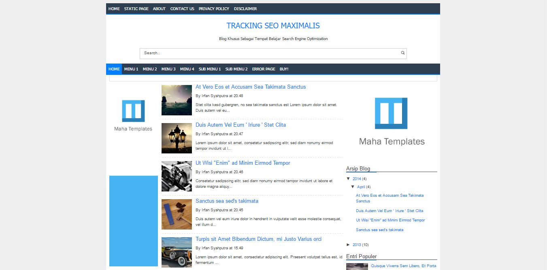 Tracking SEO Maximalis