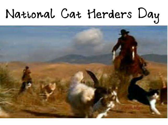 National Cat Herders Day Wishes Beautiful Image