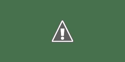 Nigerian flag hoisted high