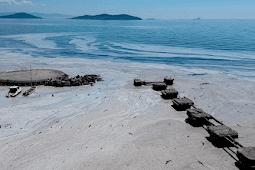 """""""مخاط البحر"""" يجتاح الساحل التركي وأردوغان يحث المسؤولين المحليين على التحقيق"""