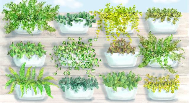4 Container Garden Ideas Fail-Proof 100%