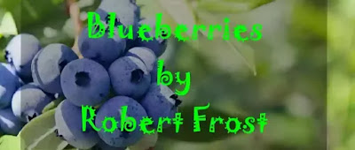 'You ought to have seen what I saw on my way To the village, through Mortenson's pasture to-day: Blueberries as big as the end of your thumb, Real sky-blue, and heavy, and ready to drum In the cavernous pail of the first one to come! And all ripe together, not some of them green And some of them ripe! You ought to have seen!' 'I don't know what part of the pasture you mean.'