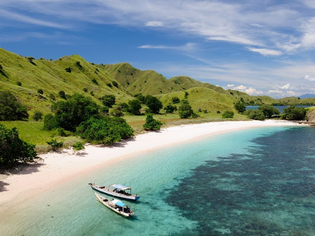 11 Facts about Komodo National Park