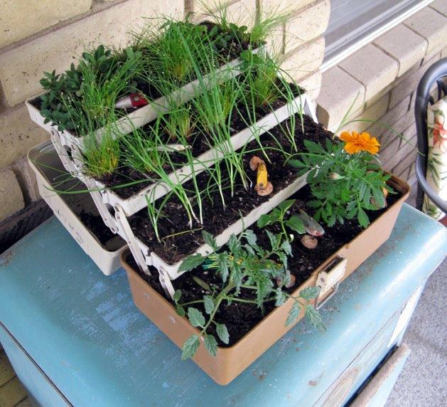 The Garden Project: Garden Space Saving Ideas