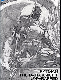 Batman: The Dark Knight Unwrapped By David Finch Deluxe Edition