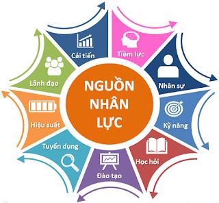 Các phân hệ trong quản lý nhân sự ở Việt Nam