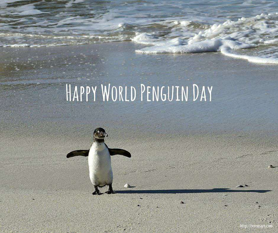 National Penguin Day Wishes Photos