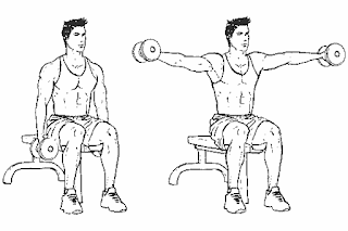2. Seated Lateral Raise