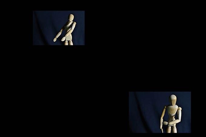 Análise do Modelo Articulado - Moisés Pantolfi