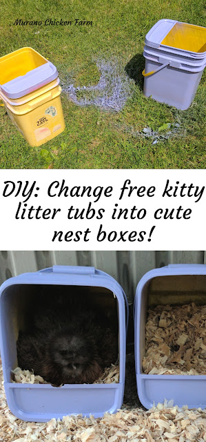 painting cat litter tubs into nest boxes