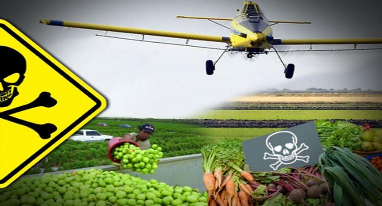 Estudo: A exposição a pesticidas durante a gravidez aumenta o risco de autismo de uma criança em cerca de 10%