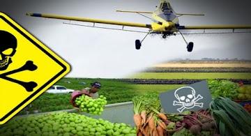 Estudo: A exposição a pesticidas durante a gravidez aumenta o risco de autismo na criança