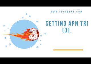 Setting APN Tri (3)