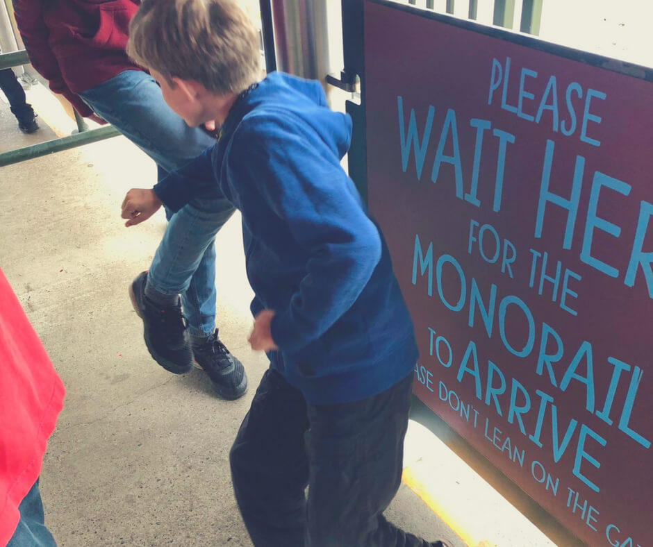 Boys fight while waiting in line for a monorail at Chester Zoo.