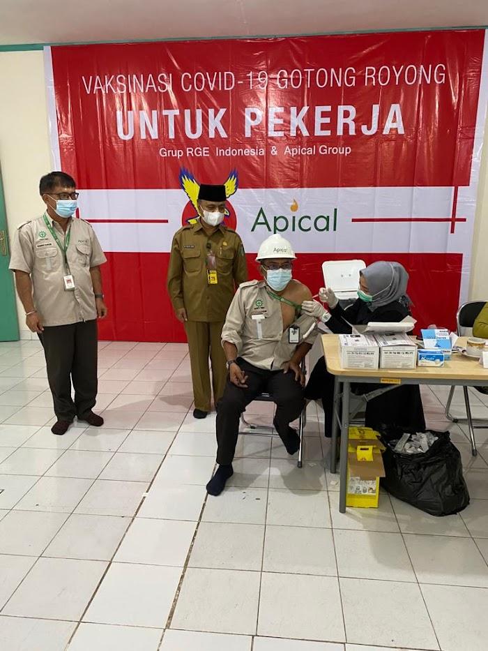 Perhatikan Kesehatan Karyawan, Apical Gelar Vaksinasi Gotong Royong Perdana di Dumai