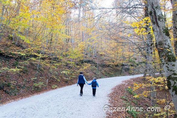 anne oğul el ele yürürken, Yedigöller Milli Parkı