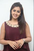 Nikki Galrani in a Brown Shining Sleeveless Gown at Nakshatram music launch ~  Exclusive 085.JPG