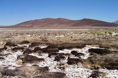 Solicitud de levantar medida cautelar a minera Cerro Colorado fue dejada en estudio por Tribunal Ambiental