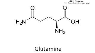 glutamine uses benefits side effect in Hindi,