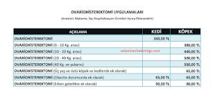 İzmir-Dişi-Kedi-Kısırlaştırma-Fiyatları