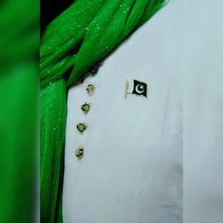 Pakistani%2BFlag%2BHoly%2BDay%2B%252830%2529