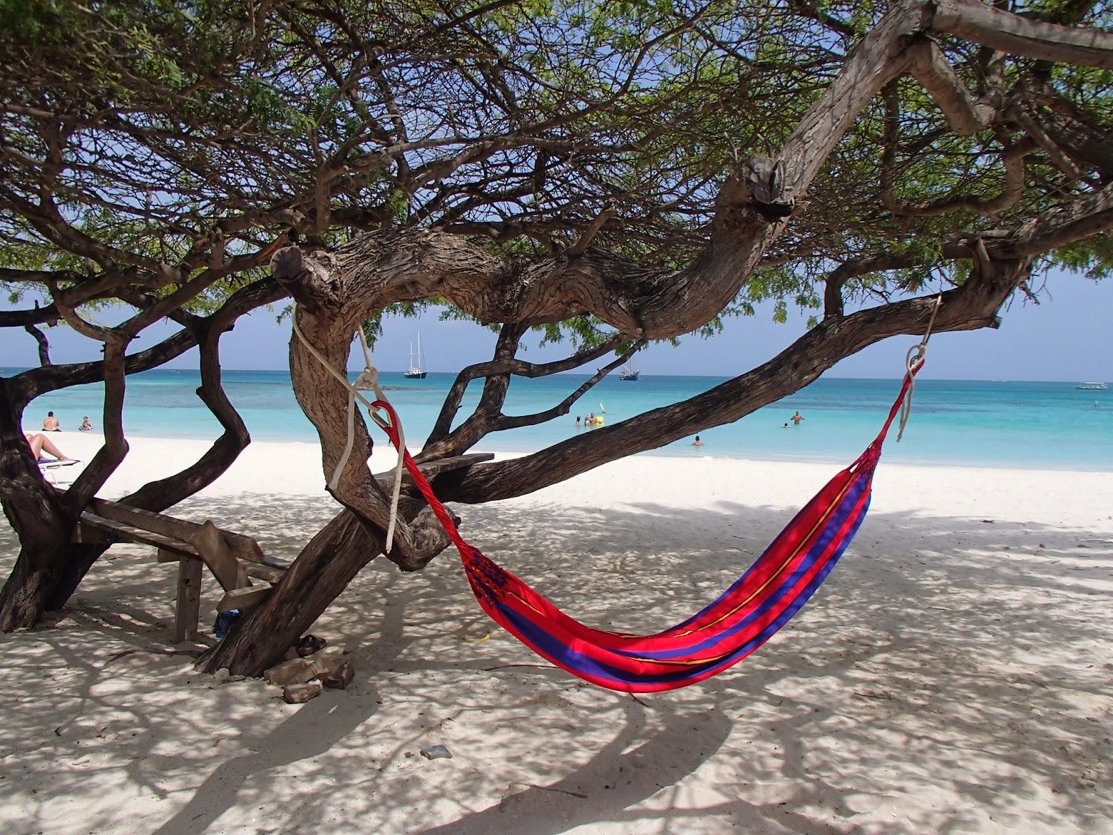 Aruban hammock