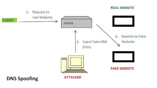 Web Hosting, Web Hosting Review, Compare Web Hosting, DNS
