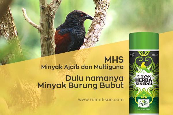 Kandungan dan Manfaat Minyak Herba Sinergi HNI HPAI