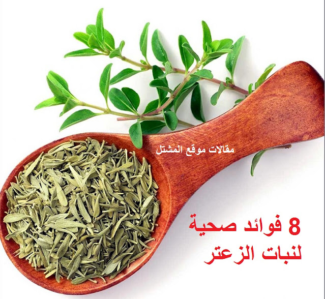 استعمالات نبات الزعتر thyme uses