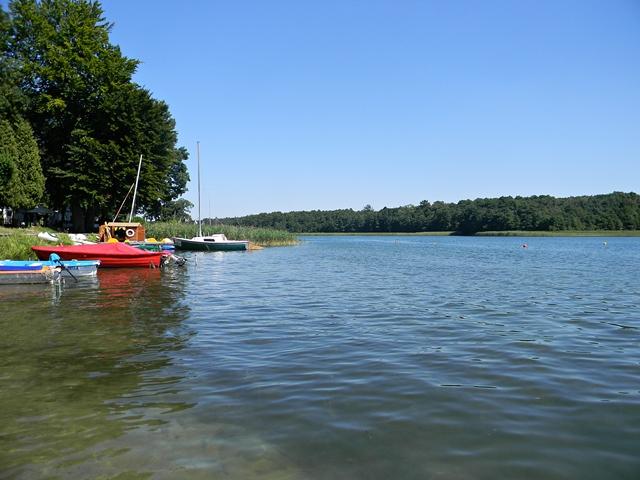 nabrzeże, las, wypoczynek, sporty wodne, żaglówki
