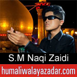 https://humaliwalaazadar.blogspot.com/2019/08/syed-mohammad-naqi-zaidi-nohay-2020.html