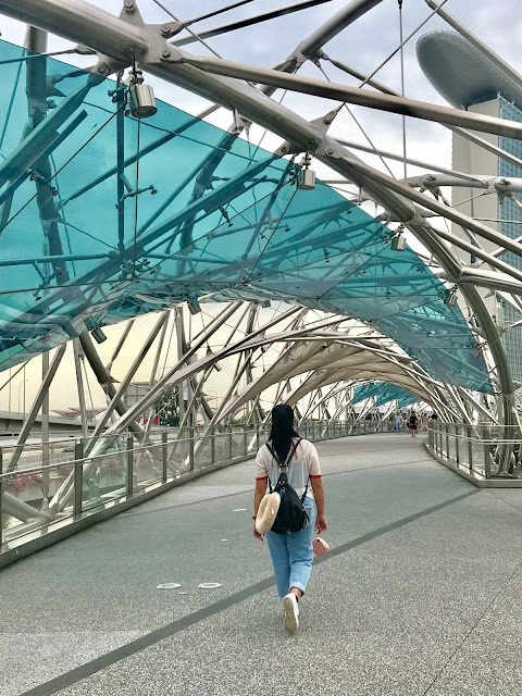 Mica crossing the Helix Bridge
