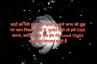 Best Love Quotes in Hindi |  good night sms