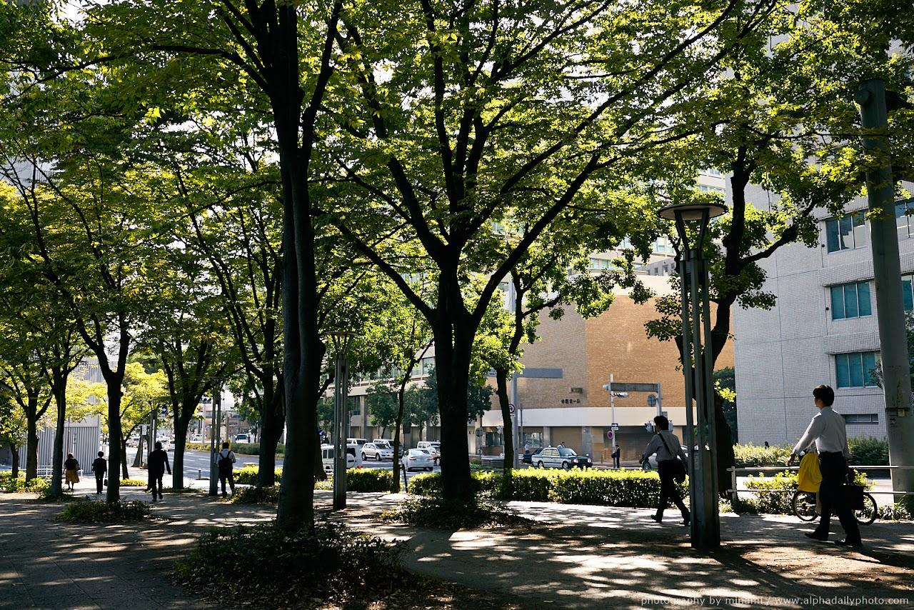 Street-snap in Sakae, Nagoya, Japan