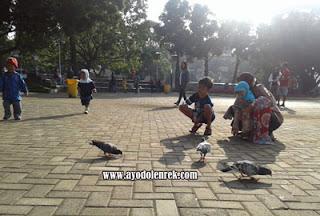 Memberi makan burung Merpati di Alun-alun Kota Malang