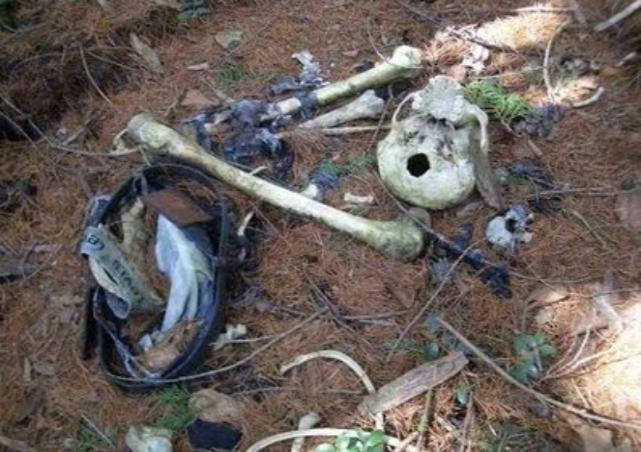 Sisa Tulang di Dalam Hutan Aokigahara