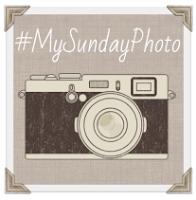 My Sunday Photo badge
