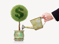 Picture of a plant in a pot with a green dollar sign in the leaves with a hand pouring water from a watering can