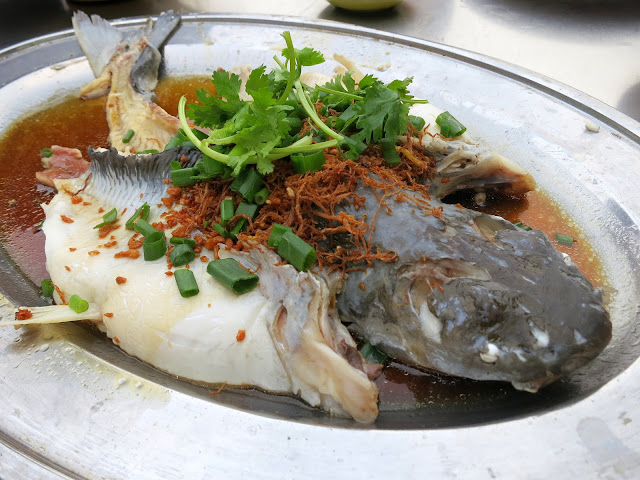 Steamed-Patin-Fish