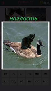 655 слов наглая кошка катается на спине утки в водоеме 17 уровень