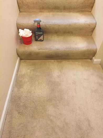 Review Stainmaster Carpet Stain Remover At Meijer And
