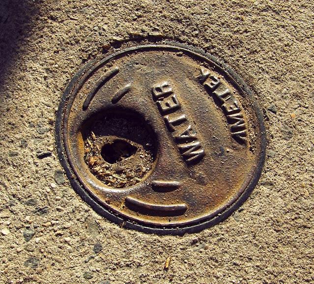Water Ametek utility cover