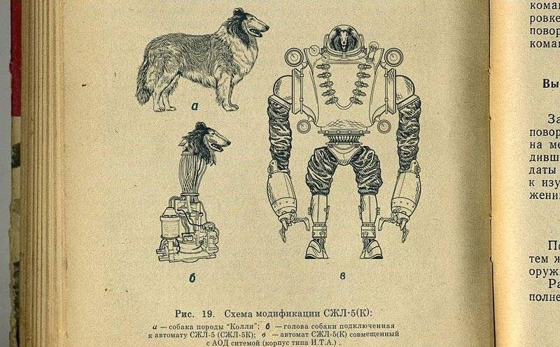 cho gan robot 3